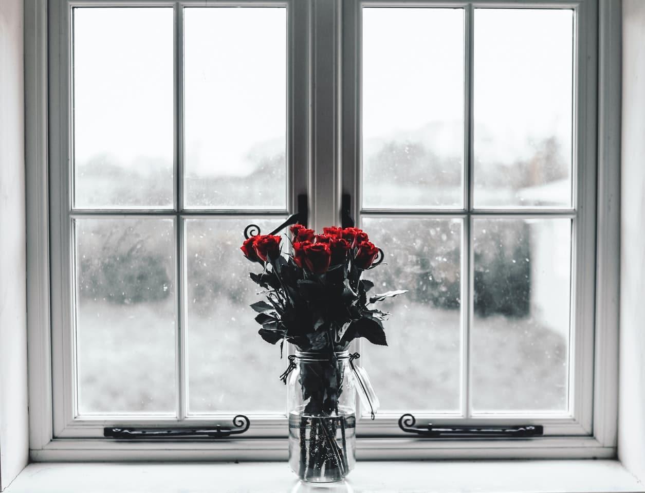 fleurs hiver