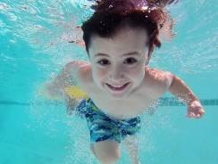 Pourquoi faire construire un abri de piscine