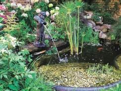 Comment faire un bassin de jardin ?