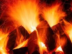 Bûches de bois compressé : tous les avantages