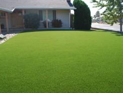 L'importance d'une pelouse bien tondue